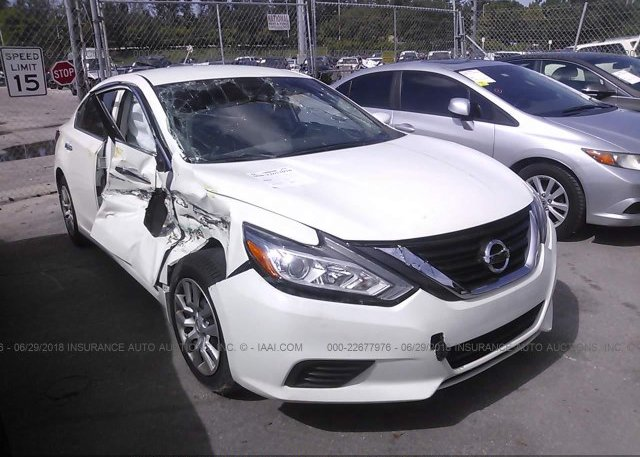 Inventory #244674526 2016 Nissan ALTIMA