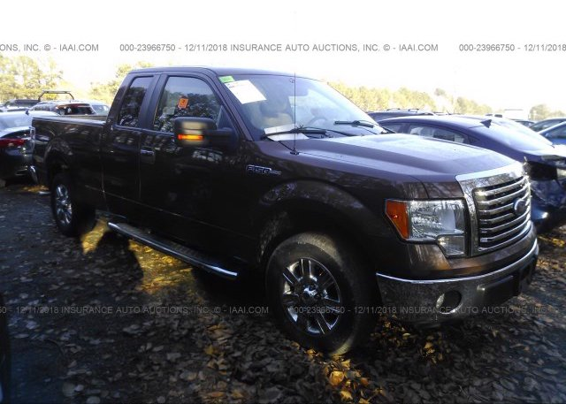 Inventory #812727373 2011 FORD F150