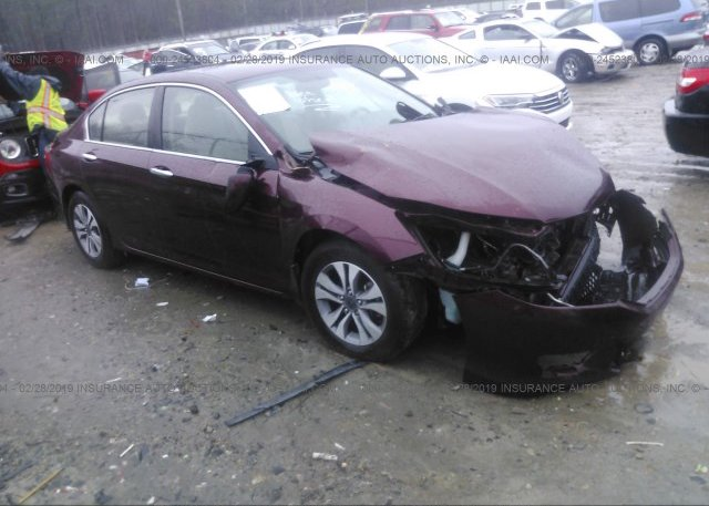 Inventory #382730445 2014 Honda ACCORD