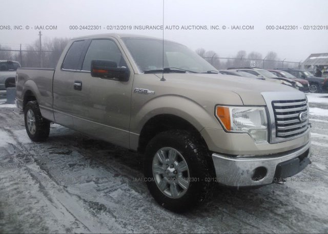 Inventory #132387805 2011 FORD F150