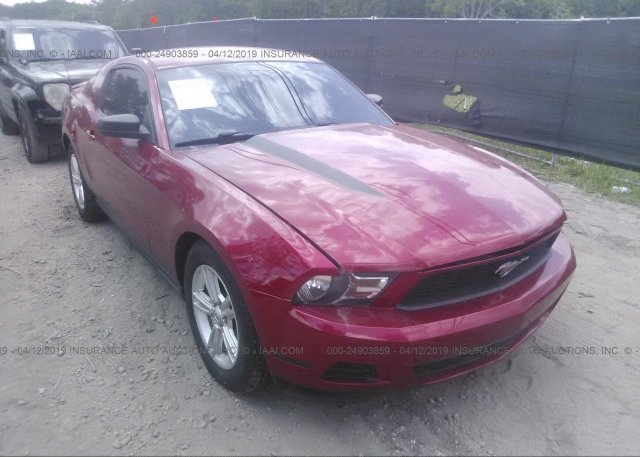 Inventory #685230633 2011 FORD MUSTANG