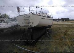 1989 ISLANDER OTHER - 00000TDL38096K889 rear view