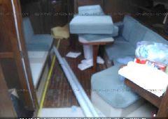 1989 ISLANDER OTHER - 00000TDL38096K889 detail view