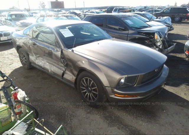 Inventory #451281389 2005 FORD MUSTANG