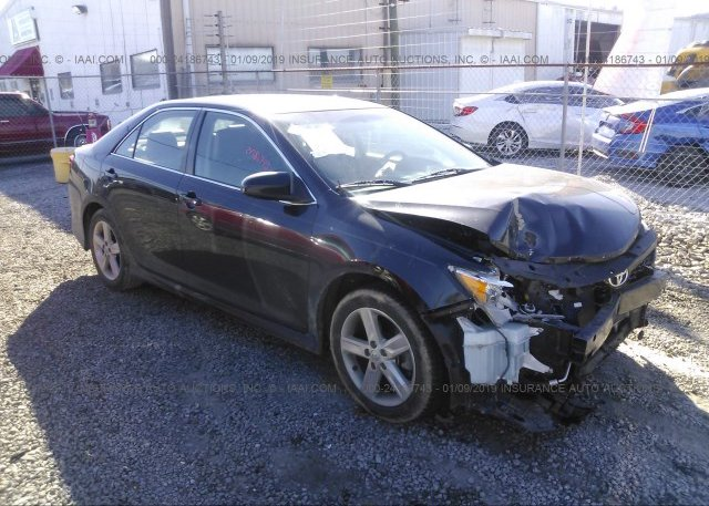 Inventory #770257490 2014 Toyota CAMRY