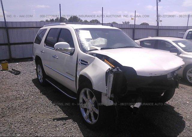 Inventory #600215404 2008 Cadillac ESCALADE