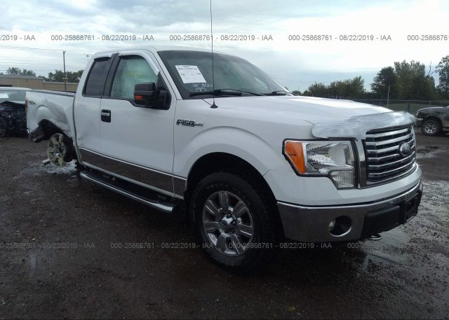 Inventory #195402624 2012 FORD F150
