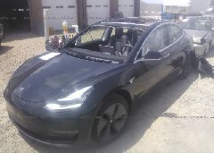 2019 TESLA MODEL 3 - 5YJ3E1EA2KF313478 Right View
