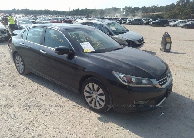 Inventory #590510010 2013 Honda ACCORD