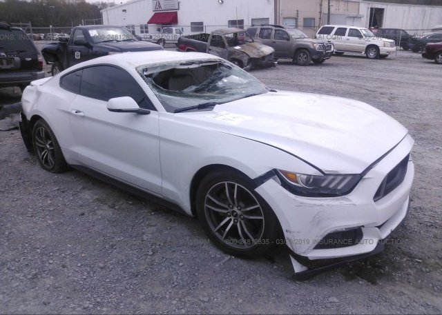 Inventory #356916927 2016 FORD MUSTANG