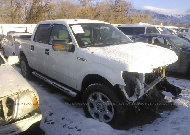 Inventory #820184396 2013 FORD F150