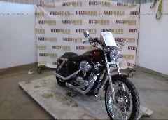 2005 Harley-davidson XL1200