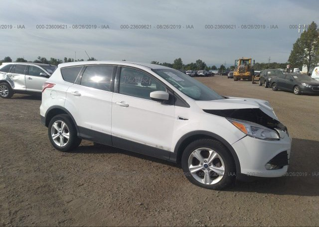 Inventory #647557892 2014 FORD ESCAPE