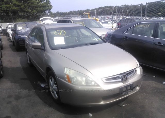 Inventory #805238443 2005 Honda ACCORD