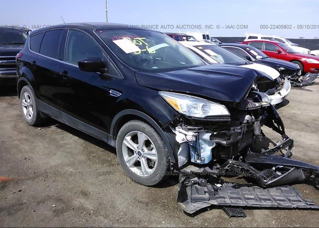 Inventory #887318244 2016 FORD ESCAPE