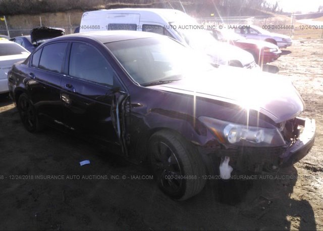 Inventory #840944541 2008 Honda ACCORD