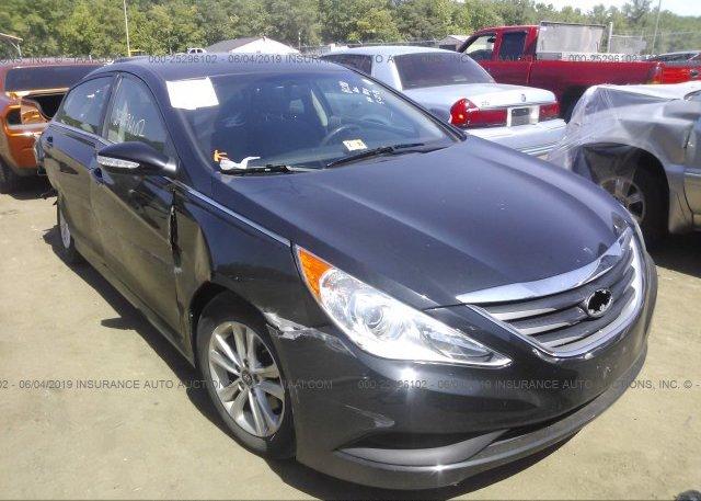 Inventory #415215300 2014 Hyundai SONATA