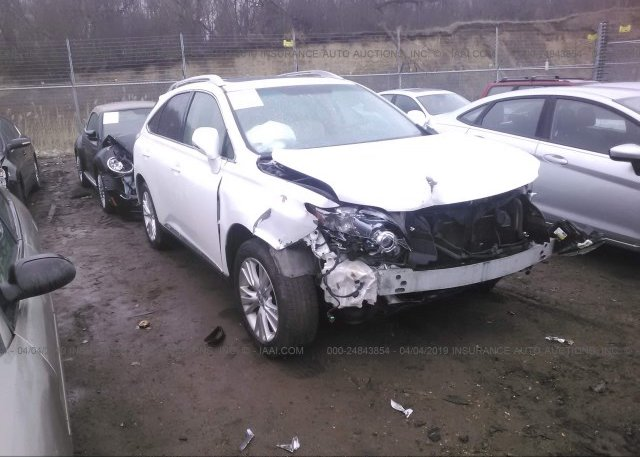 Inventory #407553489 2011 Lexus RX