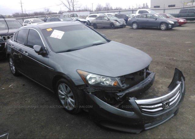 Inventory #826384199 2011 Honda ACCORD