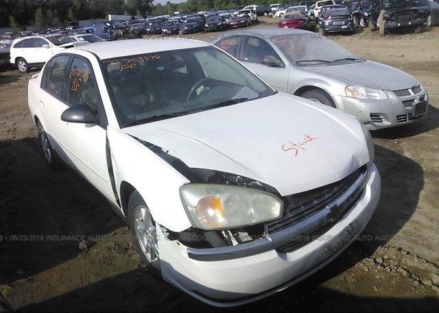 Inventory #186160510 2005 Chevrolet MALIBU