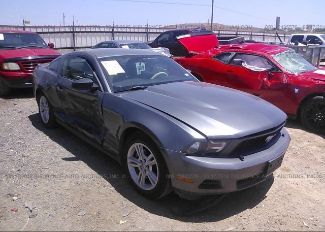 Inventory #510620634 2010 FORD MUSTANG