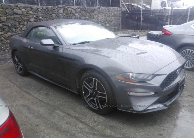 Inventory #972397982 2019 FORD MUSTANG