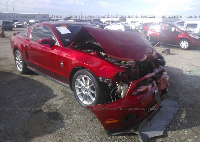 Inventory #390388695 2010 FORD MUSTANG