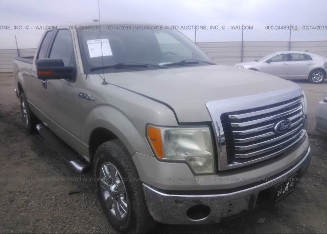 Inventory #918691031 2010 FORD F150