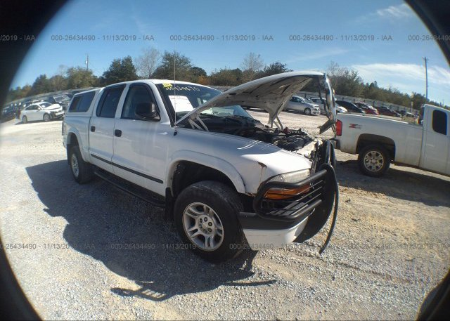 Inventory #760267524 2004 Dodge DAKOTA