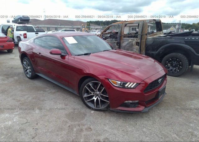 Inventory #699685854 2015 FORD MUSTANG