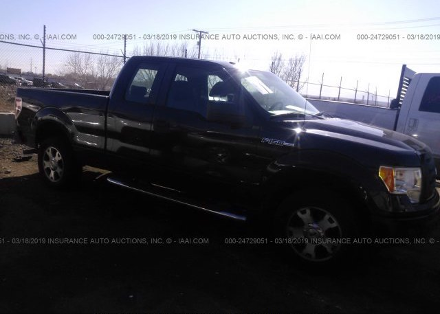 Inventory #299064868 2009 FORD F150