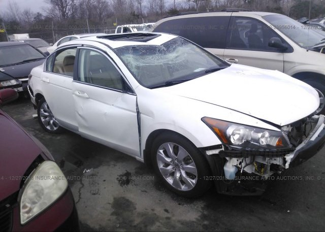 Inventory #356441945 2010 Honda ACCORD
