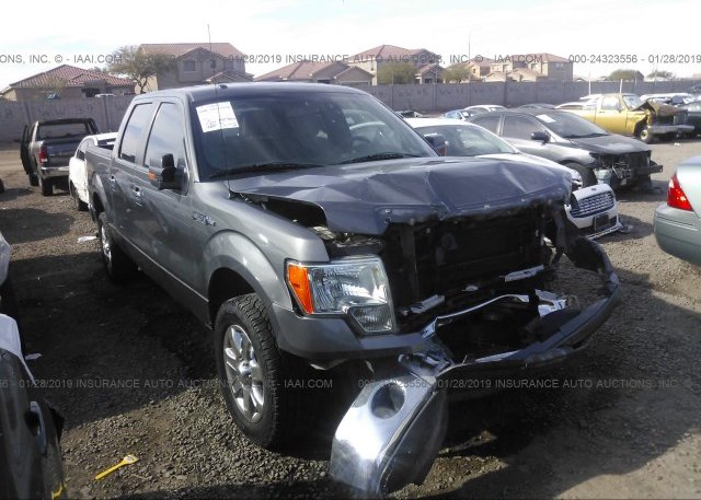 Inventory #179272930 2013 FORD F150