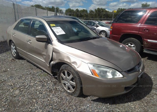 Inventory #657871138 2005 Honda ACCORD