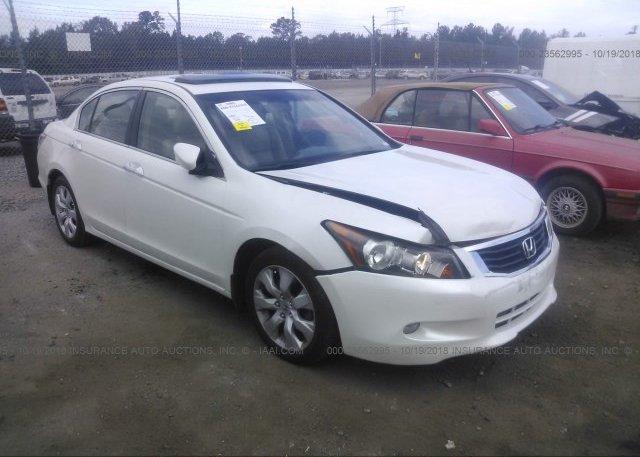 Inventory #555068031 2008 Honda ACCORD