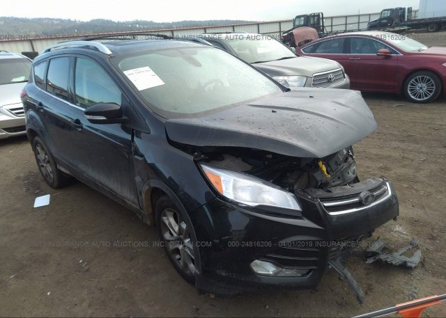 Inventory #341627965 2014 FORD ESCAPE