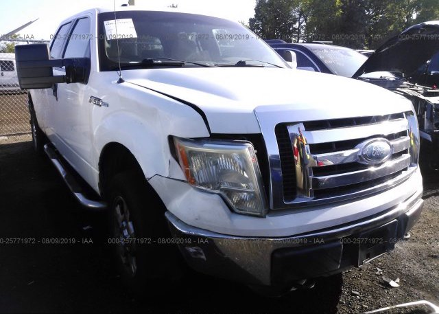 Inventory #163013063 2009 FORD F150