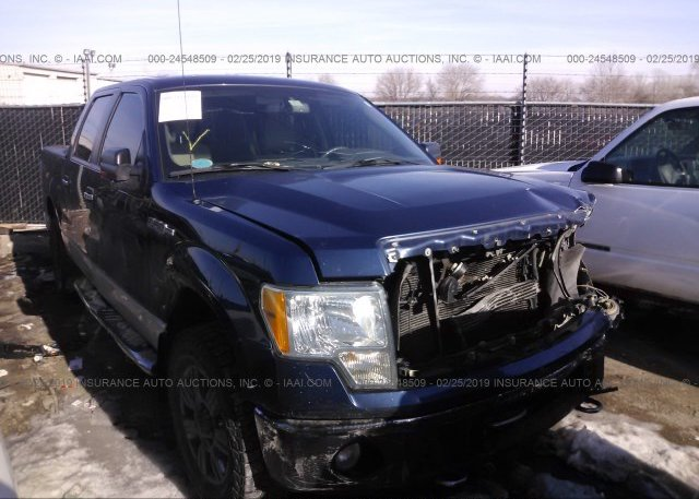 Inventory #952888296 2010 FORD F150