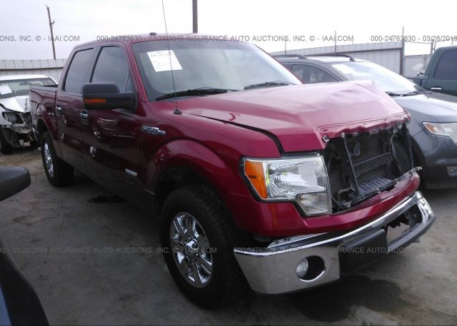 Inventory #229553911 2011 FORD F150