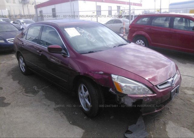 Inventory #874216829 2003 Honda ACCORD