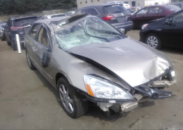 Inventory #237603517 2003 Honda ACCORD