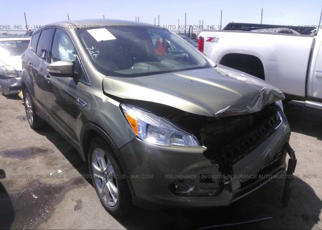 Inventory #799023088 2013 FORD ESCAPE