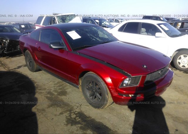 Inventory #441517723 2005 FORD MUSTANG