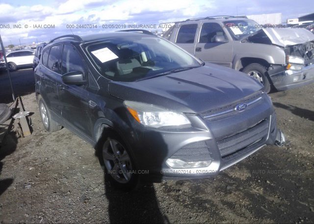 Inventory #348855144 2014 FORD ESCAPE