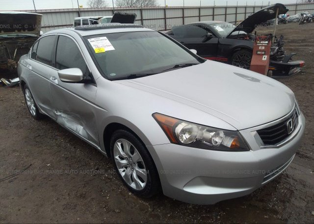 Inventory #447713380 2008 HONDA ACCORD