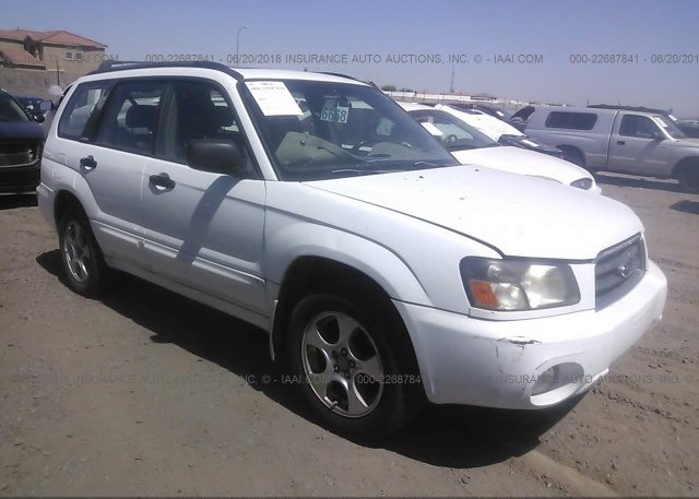 Jf1sg6563g704801 white subaru forester at phoenix az on online x2 2003 freerunsca Images