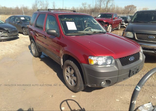Inventory #801166460 2005 FORD ESCAPE