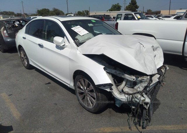 Inventory #175141900 2013 Honda ACCORD