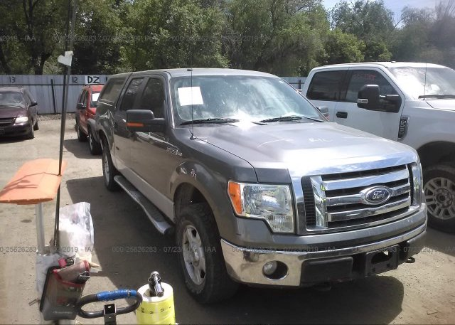 Inventory #217434134 2010 FORD F150