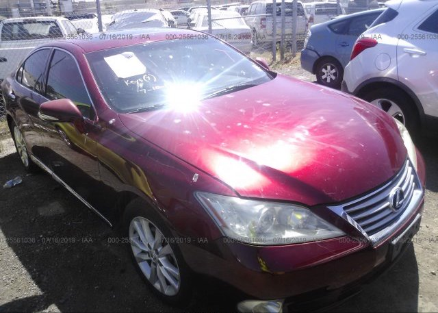 Inventory #884426663 2010 Lexus ES